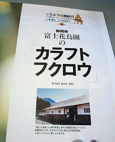 富士山,土産,Mt.FUJI,日本のお土産,おみやげ