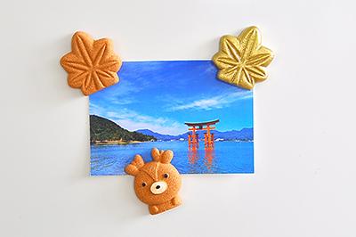広島,広島土産,カキの貝がら,広島お土産,カキの貝がらプロジェクト
